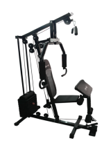 Body Gym Home Gym Ez Solid 80, Multi Gym